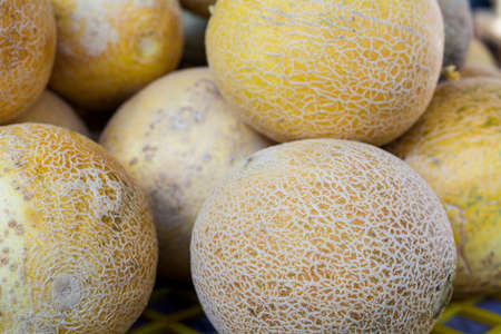 A group of Cantaloupes on display at a farmers market in California, USA- background or backdrop