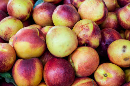A group of nectarines - background or backdrop