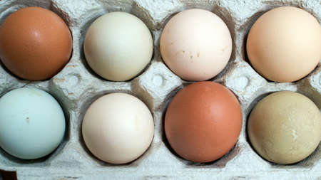 Closeup on eight unwashed chicken eggs in open carton