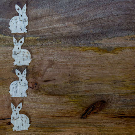 White esater bunnies lined up at the side of wooden copyspace, facing opposite directions - easter background