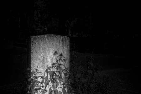 Black and white rendering of tombstone in dark cemetery  - Halloween composition with space for names and inscriptions