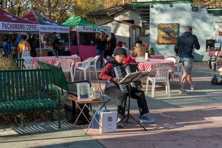 Davis, California, USA. November 2nd 2019. Entertainer accordion player playing at the local farmers market  near the food court. The Davis Farmers Market happens every Saturday