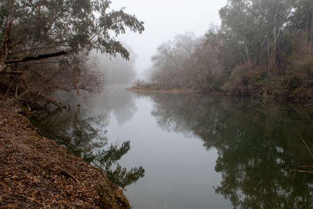 Putah Creek at the Riparian Preserve of the University if Davis, California, USA, on a foggy day. This preserve is a popular place for jogging, birdwatching and fishing.