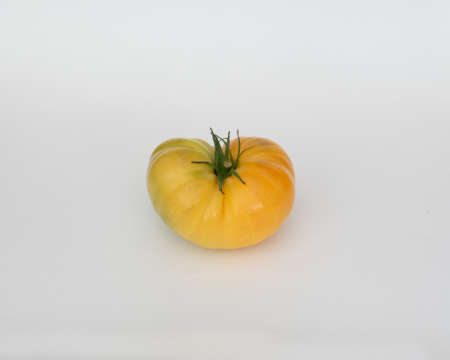 A yellow  heirloom tomato isolated in white background 免版税图像