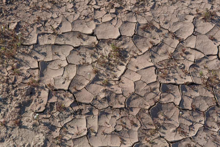 Cracked, barren soil to illustrate in the Sonoran Desert of Southern California, showing that there has been rain in the recent past