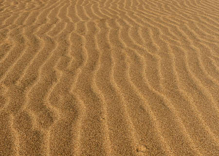 The desert floor reflects a history of seasonal rains and wind moving the sand about, creating beautiful abstract patterns like these sand ripples Stockfoto