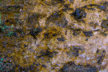 Close-up on Colorful rock background or backdrop with moss, in the colors golden, black, green and brown Stockfoto