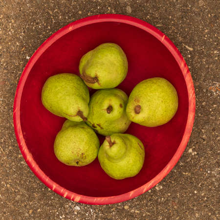 Green pears from California in red bowl seen from above- summer harvest in California concept Stockfoto