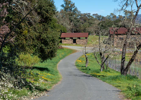 Sonoma, CA, USA, 2020-02-23. Robert Louis Stevenson State Park in the Spring, showing historical brick buildings, a path and flowers