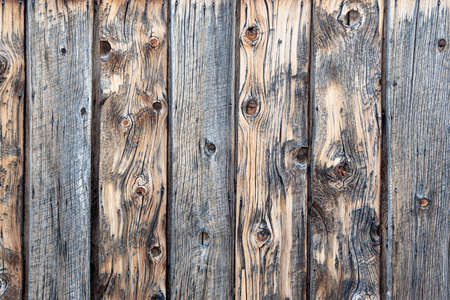 Closeup on horizontal wood boards fence- texture and background, with nails, and lots of details