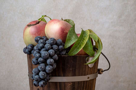 Top of a bucket made of wood and filled with peaches and comstock grapes: still life celebrating the California summer harvest Stockfoto