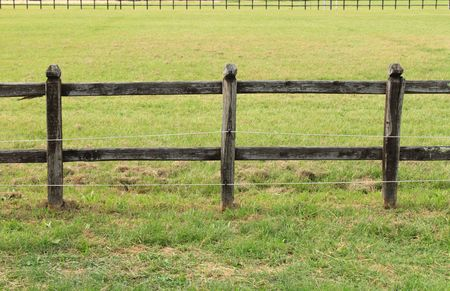 Horses wooden fence Stock Photo - 7240496