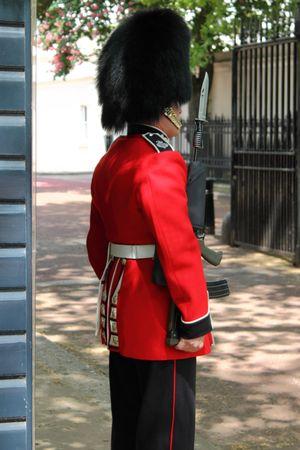 British royal guard photo