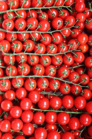 tomates: De nombreux tomates juteuses en vente dans une �choppe de march�