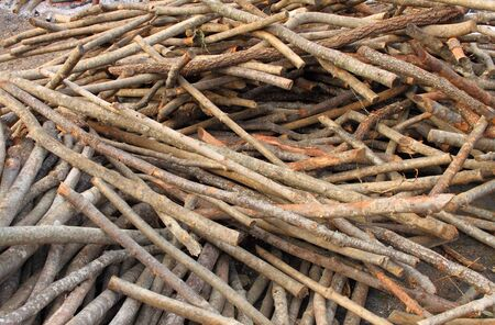 Close-up view of a pile of firewood photo