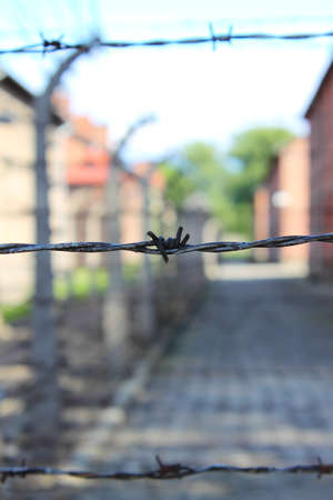 Barbed wire electrical fence at Auschwitz concentration camp, Poland photo