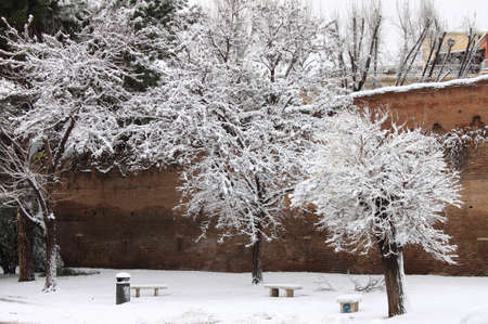 Winter snow in a public park of Rome, Italy photo