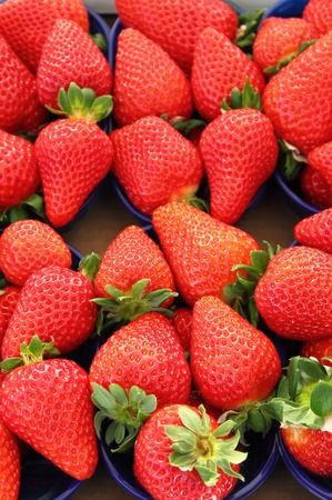 Fresh strawberries in rows for sale in a greengrocery photo