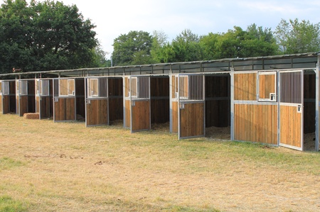 stable: Perspective view of empty horse stables