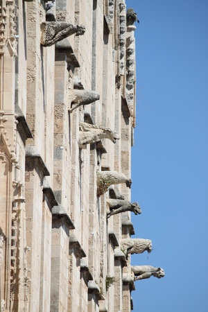 Gargoyles in the cathedral of Palma de Mallorca, Spain