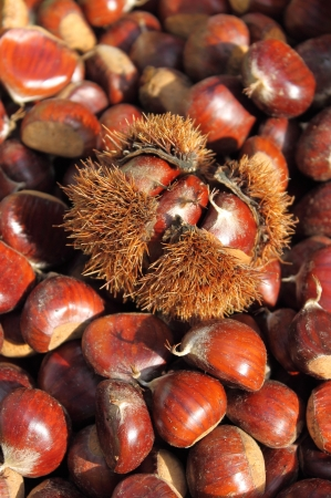 greengrocery: Chestnuts for sale in a greengrocery