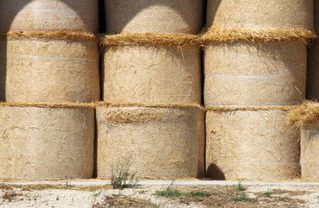 Round hay bales in a barn photo