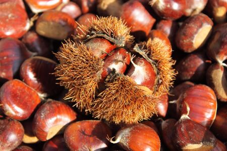 marron: Chestnuts for sale in a greengrocery