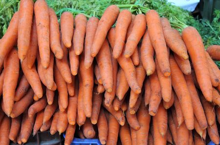 Carrots for sale in a greengrocery photo