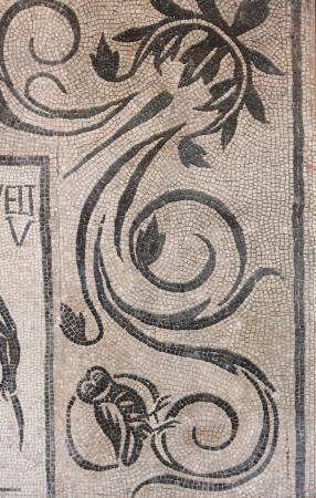Ancient mosaic pattern in Caracalla Baths. Rome, Italy Standard-Bild