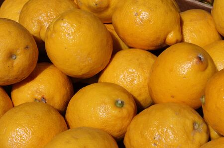 greengrocery: Lemons for sale in a greengrocery Stock Photo