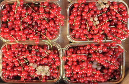 greengrocery: Fresh ripe currant for sale in a greengrocery Stock Photo