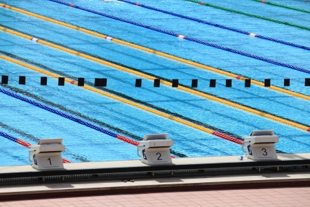 swimming race: Starting blocks in a sports competition swimming pool