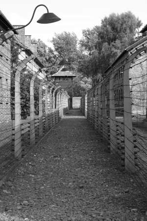 Oswiecim, Poland - July 23, 2011: Barbed wire electrical fence at Auschwitz concentration camp