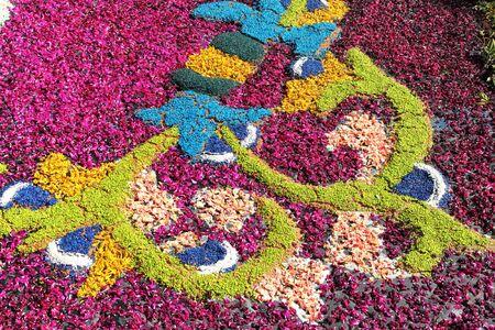 Multicolored floral carpet