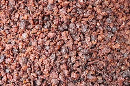 sultana: Closeup of red sultana raisin