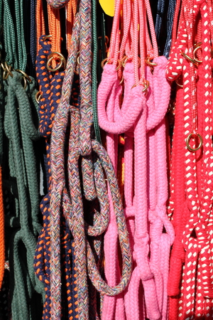 reins: Colorful horse reins sold in a market shop Stock Photo