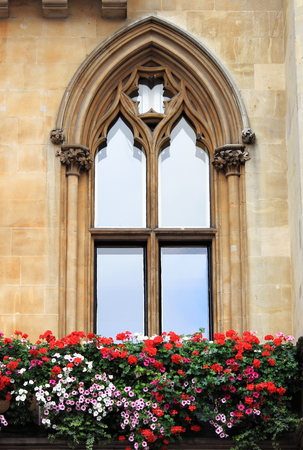 gothic window: Gothic window with decorations and flowers