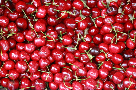 grocer: Red cherries for sale in a greengrocer