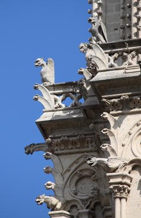 gargoyles: Gargoyles in Notre Dame Cathedral. Paris France