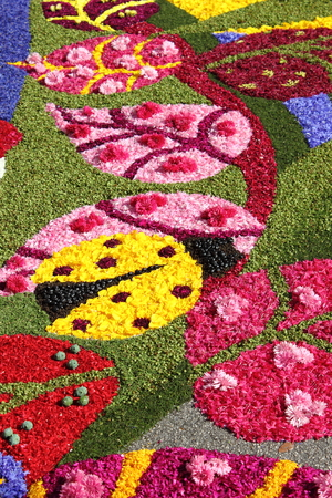 spello: SPELLO, ITALY- JUNE 7: Floral Carpet on June 7 2015 in Spello Italy. This event takes place every year and every sector honors a specific subject Editorial