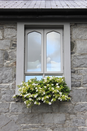 window view: Modern window with colourful flowers Stock Photo