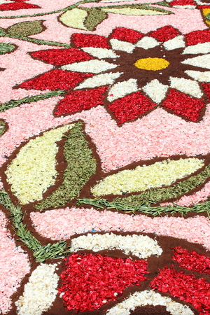 Multicolored floral carpet made with flower petals 写真素材