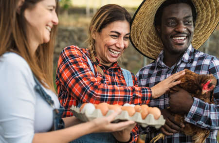 Happy farmers picking up fresh eggs in henhouse garden - Farm people lifestyle concept