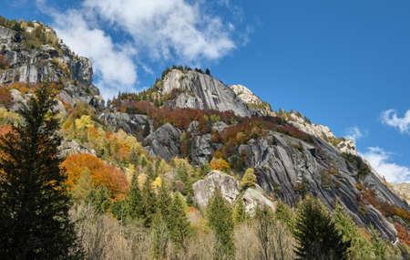 Mountain multicolor woods, in autumn season in Val di Mello, Val Masino, Italy - lombardy Stock fotó