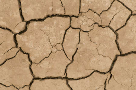 Cracks on ground induced by dry weather photo