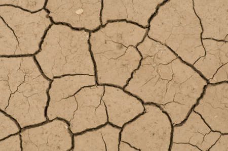 induced: Cracks on ground induced by dry weather