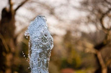 jet stream: Cierre de ornamentales brotar agua de la fuente.