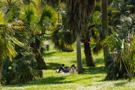 Man and woman reading books on green grass, Imagens