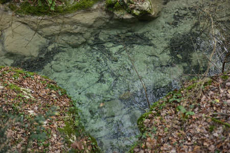 clear water Banco de Imagens
