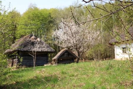 Ukraine, countryside